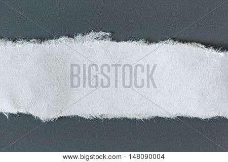 Ragged Piece Of Paper On Gray