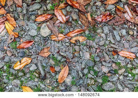 Gray Stone Sidewalk