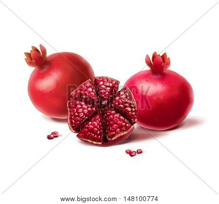 Pomegranate with seeds on white background. Sliced pomegranate fruit. Watercolor illustration. Shana Tova, pomegranate, Shofar, Yom Kippur, Sukkot, Jewish new year, Jewish holidays. Israel, traditional fruit. Shavuot. Tu Bishvat, Seven fruits, Seven Speci