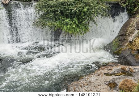 A view of a section of Tumwater Falls in Tumwater Washington.