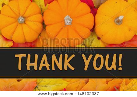 Thank You Message Some fall leaves and pumpkins with text Thank You
