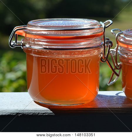 Close-up of preserved homemade apple jelly in a flip-lid glass jar.