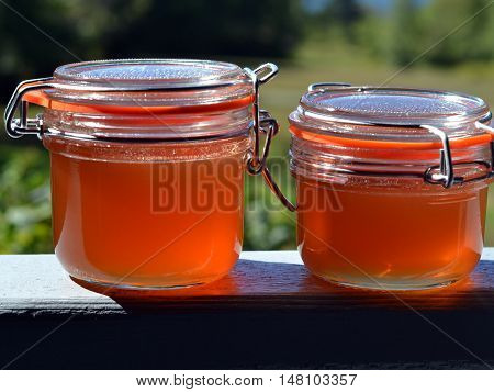 Apple and Rose Hip (Rosehip) Jelly in Glass Flip-lid Jars
