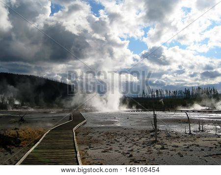 Wooden path to Norris Geyser Basin, Yellowstone National Park (Wyoming, USA)