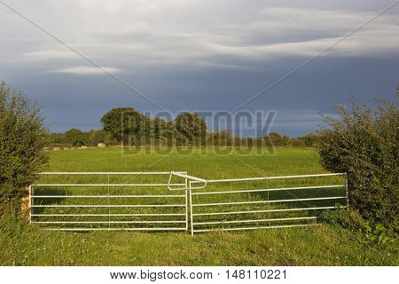 Metal Farm Gate