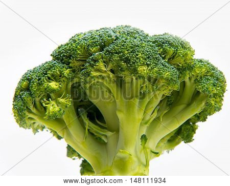 Fresh Broccoli Solated On A White Background