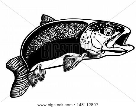 Trout Detailed Isolated On White 3