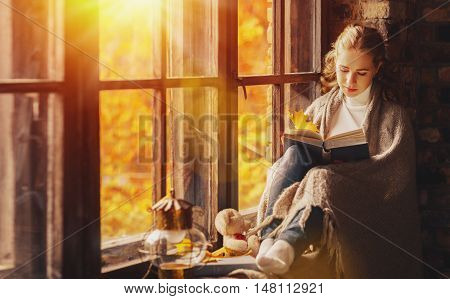 Happy young woman reading a book by the window in the fall