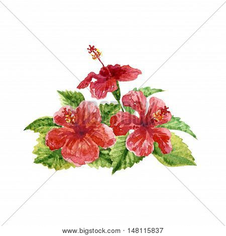 Raster vivid image of a pink hibiscus isolated on white. Design and floral element image for ads tags and covers decoration of different printed production.
