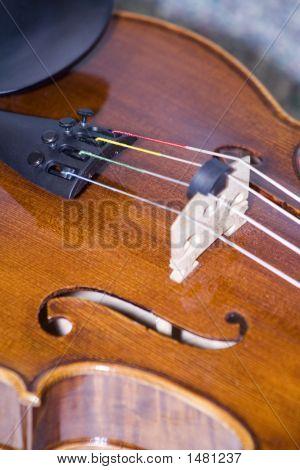 Violin Closeup