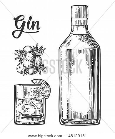 Glass and bottle of gin and branch of Juniper with berries. Vintage vector engraving illustration for label poster web invitation to party. Isolated on white background