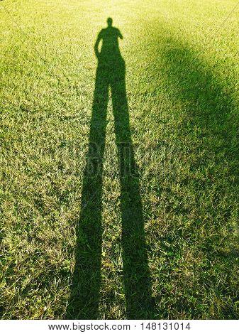 Long human shadow on summer evening on green grass.