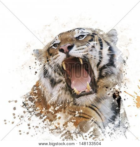 Digital Painting of Tiger Roaring