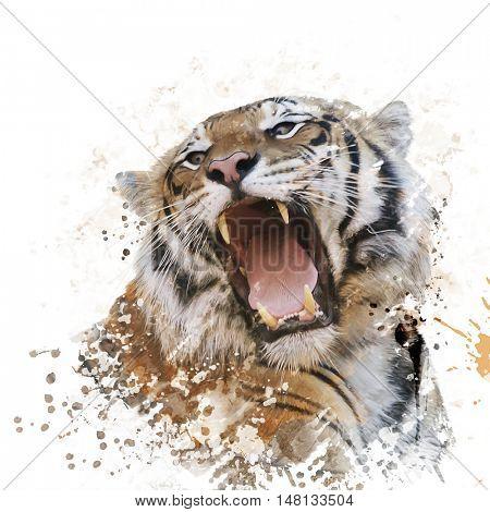 Digital Painting of Tiger Roaring