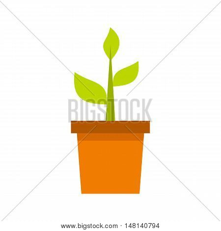 Plant in clay pot icon in flat style isolated on white background. Gardening symbol vector illustration