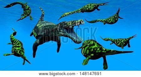 Nothosaurus Marine Reptile 3D Illustration - A Nothosaurus marine reptile attacks a pod of Hepehsuchus dinosaurs in a Triassic Ocean.