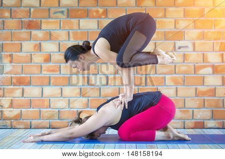 Couple practicing yoga together upward facing dog on top of plank pose