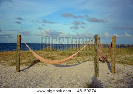 Net hammocks strung between posts at the beach