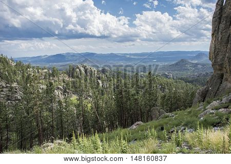 Needles Highway Landscape