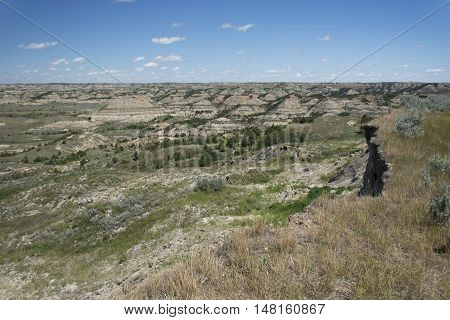 Landscape of Theodore Roosevelt National Park, North Dakota, USA.