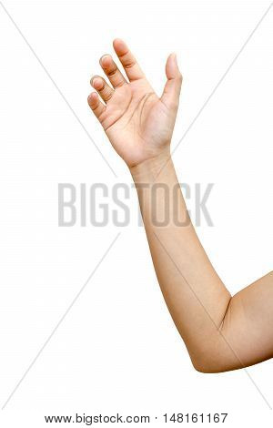 Hand male or female isolated on the white background clipping path included.