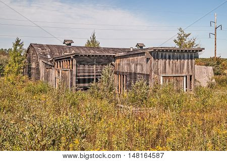 Weathered barn and buildings overgrown with weeds and flowers in a rural area