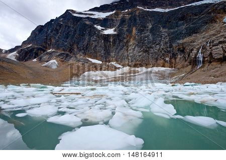 Cold alpine lake with ice and icebergs. Angel Glacier at Mount Edith Cavell. Jasper National Park. Canadian Rockies. Alberta. Canada.