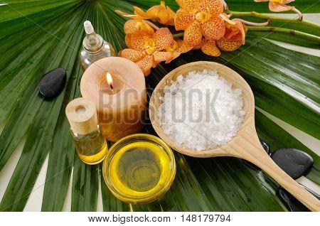 Spa setting on palm