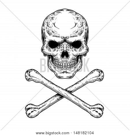 Vector illustration of a skull and crossbones, engraving