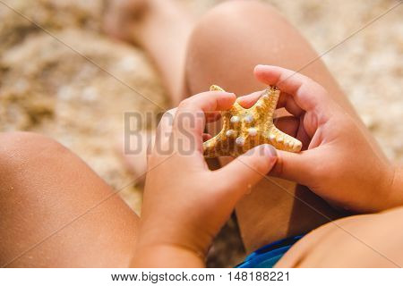 Young boy outdoors holding starfish. a child in the hands considering starfish