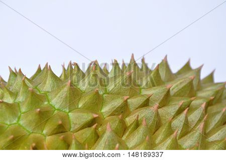 close up of durian thorn texture and background
