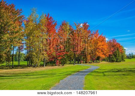 Warm sunny day on the outskirts of Montreal. The concept of eco-tourism. Golden autumn in French Canada. Multi-colored trees, green lawn grass and blue sky