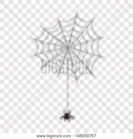 Realistic spider on web, vector illustration. Halloween elements, details. Scary natural vector spider hanging, silhouette. Spider vector on white. Spider web, Halloween party attribute.