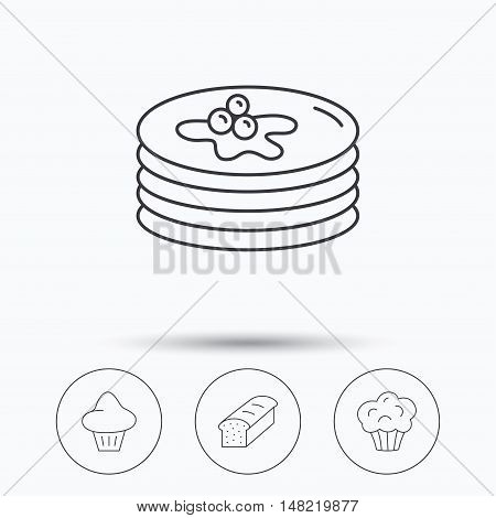 Pancakes, brioche muffin and toast bread icons. Cupcake linear sign. Linear icons in circle buttons. Flat web symbols. Vector