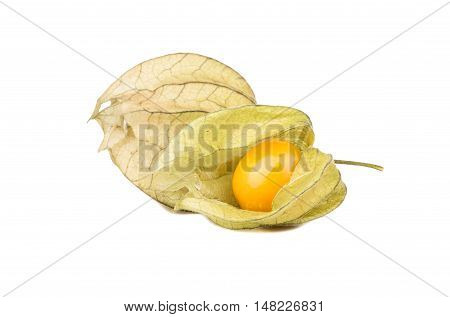 Fresh Fruit Physalis