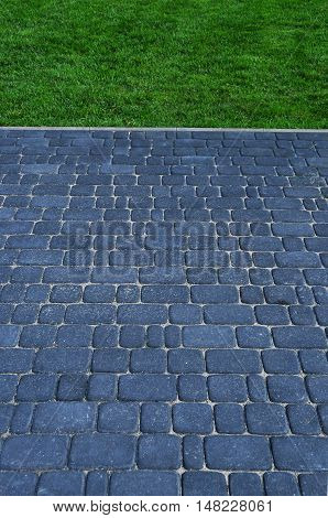 Paving and lawn. Park, a place of rest