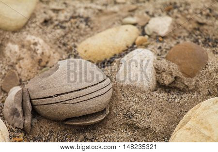 well-worn pebbles on the island. in nature.