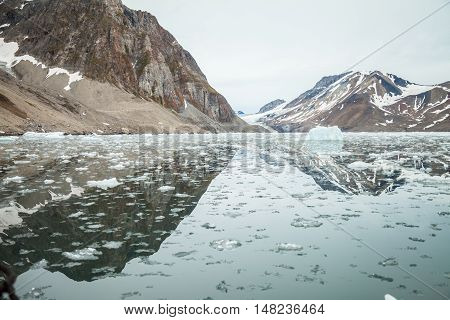 Island and ice in Arctic on summer