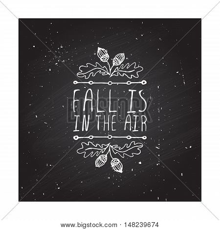 Hand-sketched typographic element with acorns and text on blackboard background. Fall is in the year