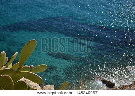 En Alicante. Viendo el mar desde la terraza.