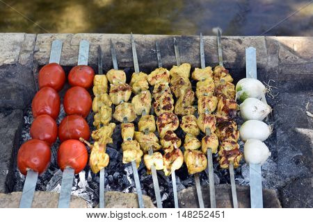 Iranian chicken Barbecue with onion and chilly  in the park