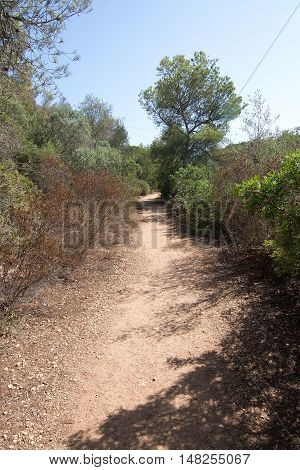 Cala Mondrago natural reserve park on a sunny day in September in Mallorca Spain.