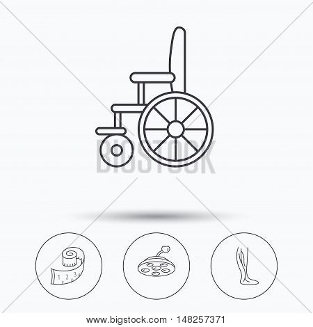 Weight loss, wheelchair and vein varicose icons. Surgical lamp and phlebology linear signs. Linear icons in circle buttons. Flat web symbols. Vector