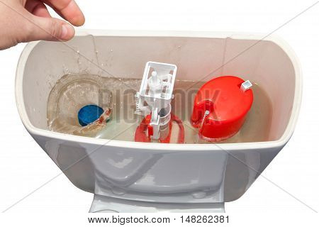 Hand down a cleanser in water flush tank toilet bowl.