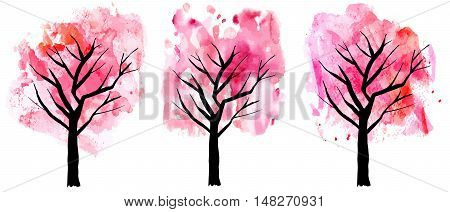 A set of abstract vector and watercolor drawings of pink blooming trees in spring, freehand illustrations on white background