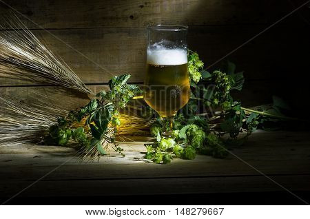 Still life with beer hops and ears of corn on the wooden table