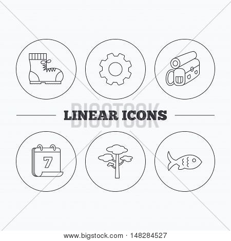 Pine tree, fish and hiking boots icons. Bonfire linear sign. Flat cogwheel and calendar symbols. Linear icons in circle buttons. Vector