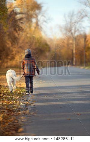 Little boy walking with a golden retriever in autumn park