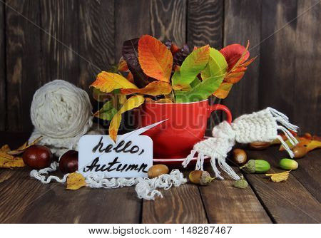 cup red with autumn leaves and a knitted scarf and an inscription hello autumn