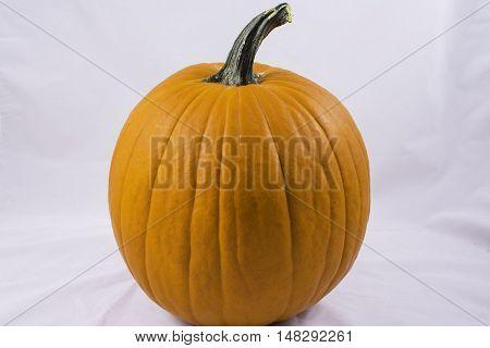isolated medium orange pumpkin on white background